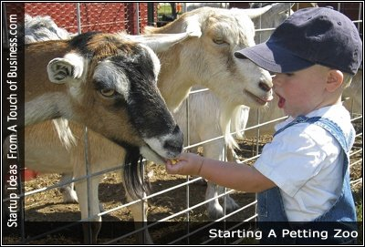 Image of a child feeding animals